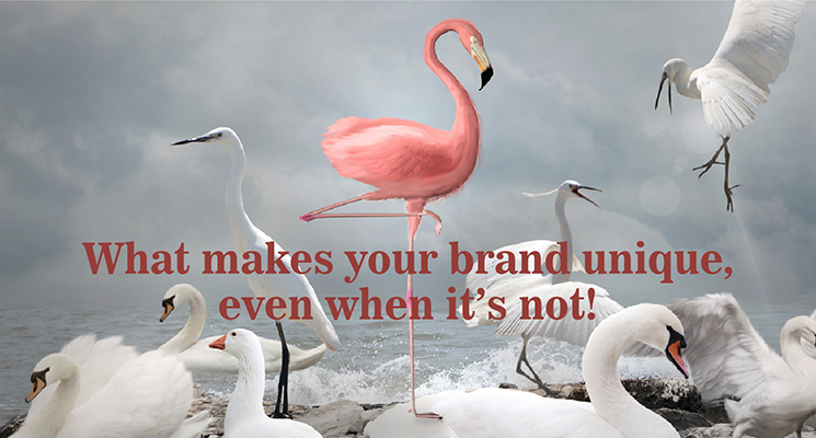 What makes your brand unique, even when it is not!